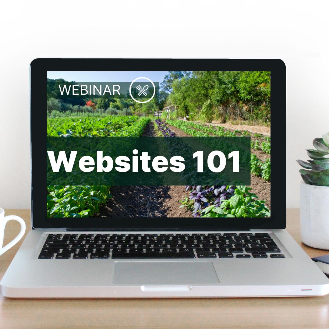 website image - websites 101
